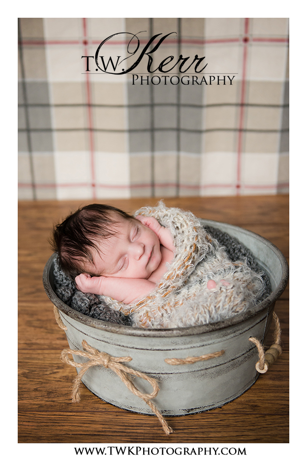 newborn photographer in portland